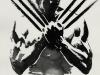 Wolverine Online Image_816x1211