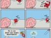becco-giallo-presenta-heart-and-brain-05