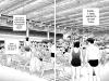 recensione-sakura-mail-manga-08