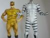 tiger-mask8