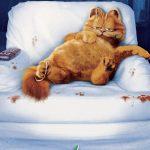 ¤ Ufficializzato un nuovo progetto cineamtografico su Garfield