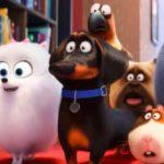 ¤ Recensione Pets 2 - Vita da animali